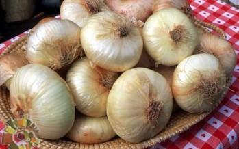 Cipolla di Giarratana (Sicilia)