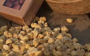 Castagna essiccata nei tecci di Murialdo e Calizzano