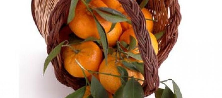 Mandarino Tardivo di Ciaculli (Sicilia)