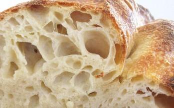Pane tradizionale dell' Alta Murgia (Puglia)
