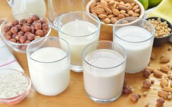 Bevande vegetali alternative al latte. Facciamo chiarezza