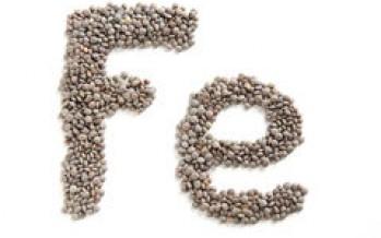 Il Ferro alimentare